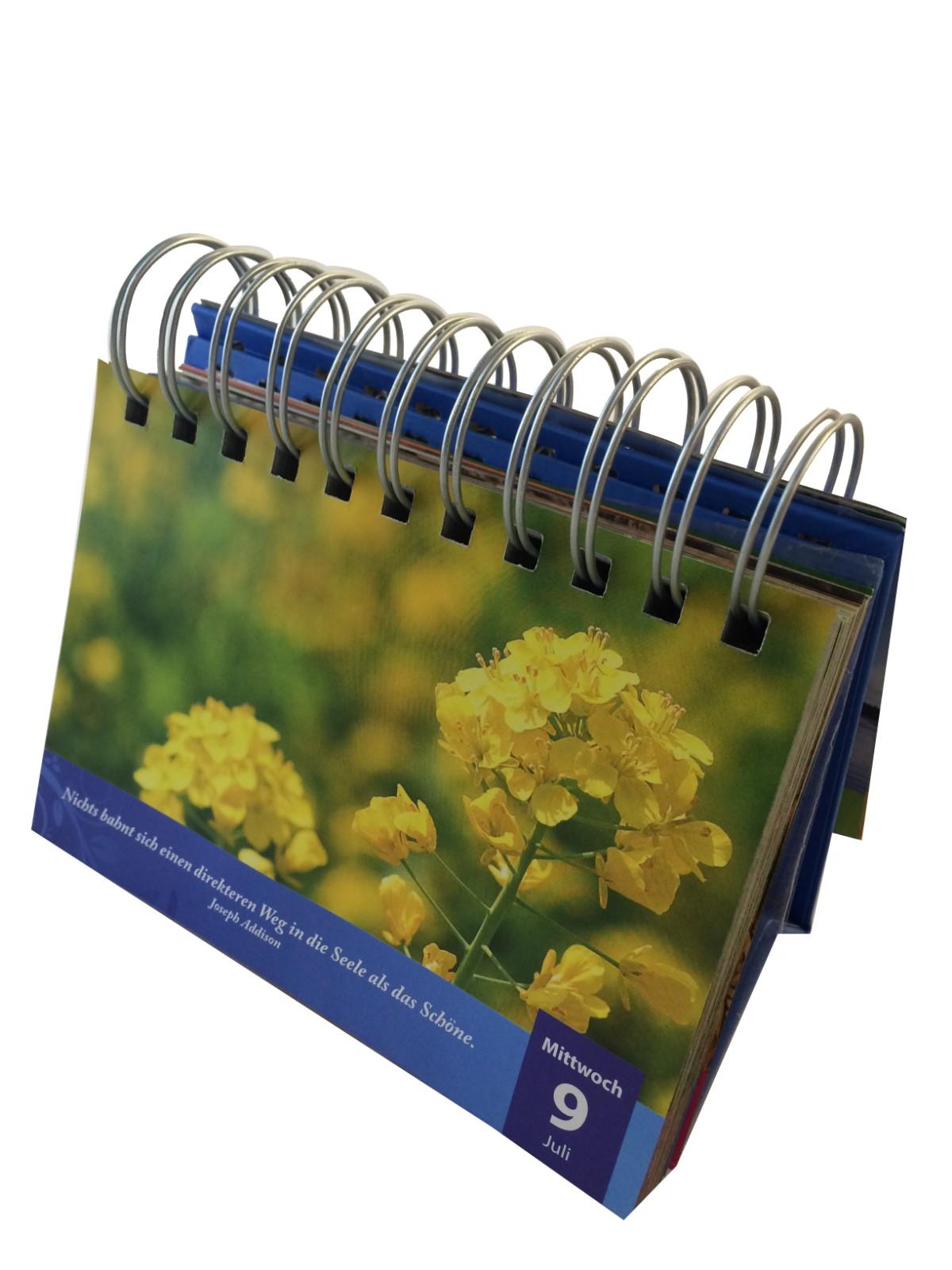 Guangjin -Manufacture | Calendar-2
