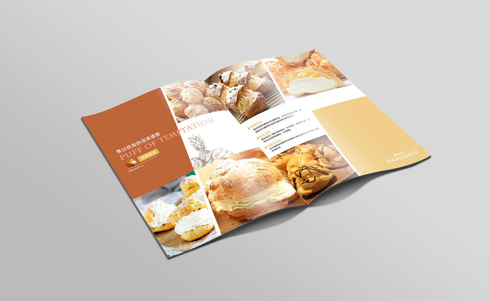 Coustom paper product catalogue and compang's brochure