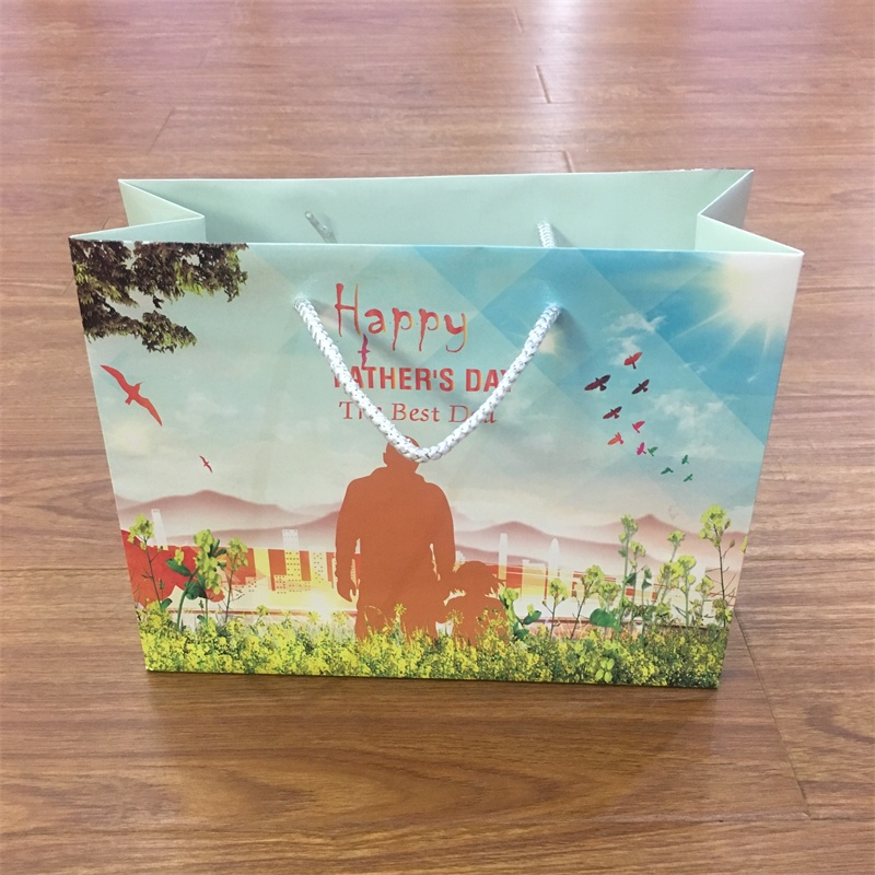 product-China Supplier Custom Gift Paper Bags With PP Handle-Guangjin -img