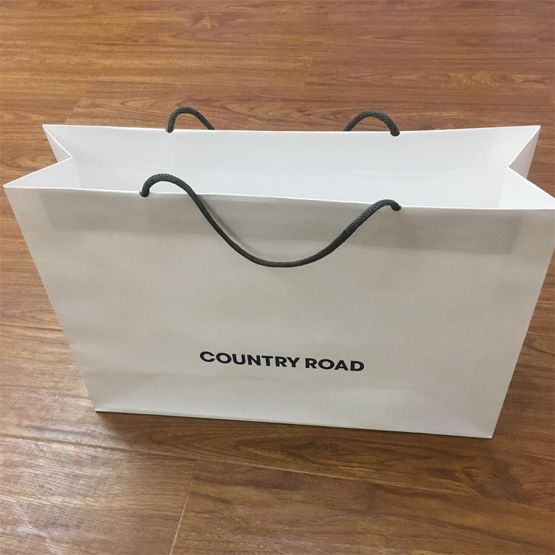 Packaging Print Carrier Paper Bag with New Style Paper Handle